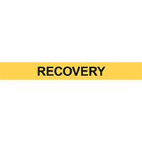 RECOVERY PIPE MARKER