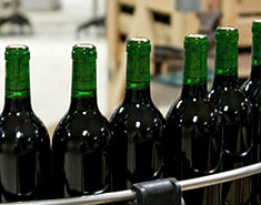 Common Violations in Winemaking