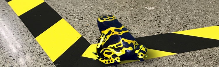 Pathfinder rigid hazard tape and yellow banded frog